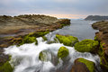 Sea water flows over mosses waters and rocks make a great scene Stock Images