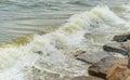 Sea wave with beach, Algal bloom