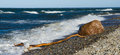Sea waves lapping on the shore baltic sea Royalty Free Stock Image