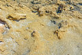 Seabed during the ebb tide period close up view to dried at cyprus coast Stock Image