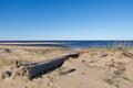 Seaboard white sea russia arkhangelsk region Royalty Free Stock Photo