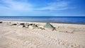 Seacoast sand beach sunny day at sea Royalty Free Stock Photos