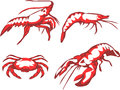 Seafood crustaceans lobster shrimp crab Royalty Free Stock Photos