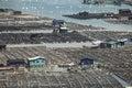 Seafood fish farming,Fishery on sea, Fujiang, China