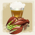 Seafood illustration with prepared lobster against glass of beer drawn in vintage style with using self made grunge pattern Stock Images