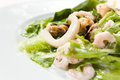 Seafood Salad Close-up Stock Image