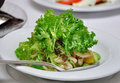 Seafood salad and greens on a plate Royalty Free Stock Photo