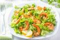 Seafood shrimp lettuce salad on white plate Royalty Free Stock Photo