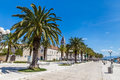 Seafront promenade with palms trogir croatia and church tower dalmatia europe Stock Photos