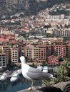Seagull above harbour at Monte Carlo Royalty Free Stock Images