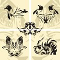 Seagull dragon butterfly a snake vector eleme five stylized elements for your design Stock Image