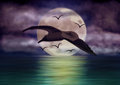 Seagull flying over the sea in front of the full Moon Royalty Free Stock Photography