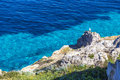 Seagull resting on a rock on Favignana island near Cala Rossa lagoon in Sicily, Italy Royalty Free Stock Photo