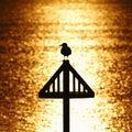 Seagull Silhouette Against Gol...