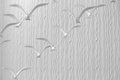 Seagulls in flight group of white background Stock Image