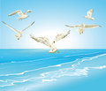 Seagulls flying over sea illustration of flock of blue Stock Image