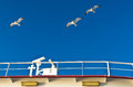 Seagulls in low flight over the ferry near thassos island greece Royalty Free Stock Image