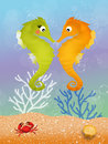Seahorses in love in the ocean Stock Photos