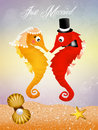 Seahorses in love the ocean Royalty Free Stock Photo