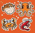 Sealife cartoon character pack Royalty Free Stock Photo