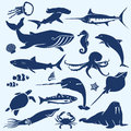 Sealife, sea and ocean animals and fish silhouettes Royalty Free Stock Photo