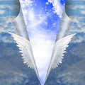 Seam of mortals angel wings pull apart to reveal other Royalty Free Stock Photography