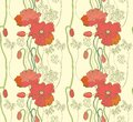 Seamless abstract natural background with poppy beautiful illustration Royalty Free Stock Photos