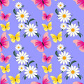 Seamless abstract pattern with camomiles and butterflies is presented Royalty Free Stock Photos
