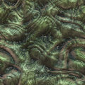 Seamless Alien or Reptile Skin Royalty Free Stock Photo