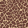 Seamless animal print with red-brown spots on a beige background, giraffe skin, vector