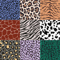 Seamless Animal Skin Pattern