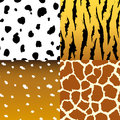 Seamless animal skin texture fabric set vector illustrations Royalty Free Stock Photo