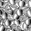 Seamless apple background black and white Royalty Free Stock Photography