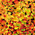 Seamless autumn background Royalty Free Stock Image
