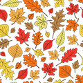 Seamless Autumn Fall Leaves Pattern Vector Royalty Free Stock Photo