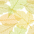 Seamless autumn leaves pattern Stock Photo