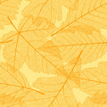 Seamless autumn leaves pattern Royalty Free Stock Image
