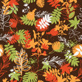 Seamless autumn pattern with a color leaves Stock Photos