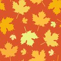 Seamless Autumn Pattern with Leaves Fall