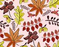Seamless autumn vector pattern with leaves