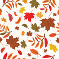 Seamless autumnal background Royalty Free Stock Photography