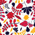 Seamless autumnal leaves pattern on white background Stock Image