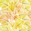 Seamless Background - Autumn Leaves Pattern Royalty Free Stock Photo