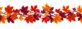 Seamless background with autumn maple leaves Stock Images