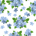 Seamless background with blue flowers. Royalty Free Stock Photo