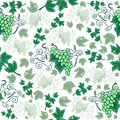 Seamless background with bunches of grapes illustration from Stock Image