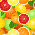 Seamless background with citrus fruits. Royalty Free Stock Photos