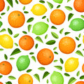 Seamless background with citrus fruits oranges lemons limes and leaves on white Royalty Free Stock Photography