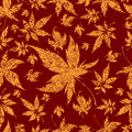 Seamless Background with colorful Autumn Leaves Royalty Free Stock Photos