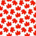 Seamless  background with colorful red maple leaves Royalty Free Stock Photo